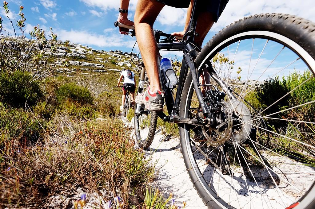 Mountainbiken Jetzt Media & Werbung